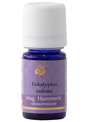 Eukalyptusöl radiata - Eucalyptus